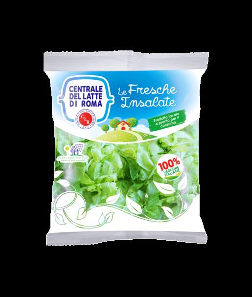 Insalata iceberg lavata busta Centrale Del Latte Di Roma