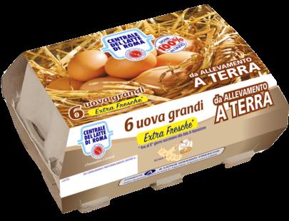 6 uova grandi extra fresche allevamento a terra Centrale del Latte di Roma